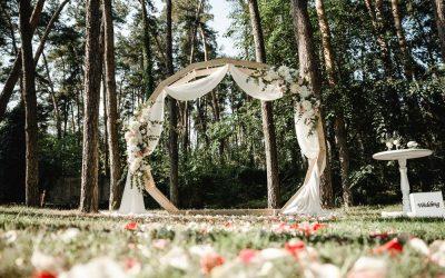Consejos para organizar una boda eco-friendly